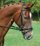 "Red Barn LEVADE 7/8"" Round Raised Padded Noseband"