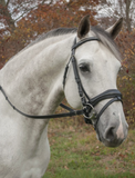 Red Barn PIAFFE Mono-Crown Round Raised Padded Noseband
