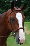 Red Barn ICON Fancy Stitched Square Raised Padded Noseband