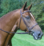 Red Barn SPIRIT Fancy Stitched Round Raised Padded Noseband