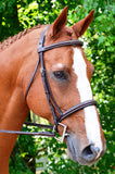 Black Oak ASTER Padded Fancy Stitched Round Raised Hunter Bridle with Reins