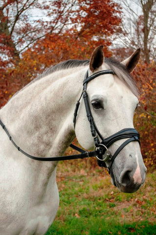 Red Barn Black Leather PIAFFE Dressage Bridle with Reins