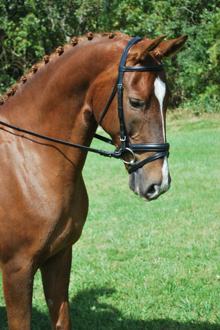 Red Barn Black Leather TRAVERS Dressage Bridle with Reins