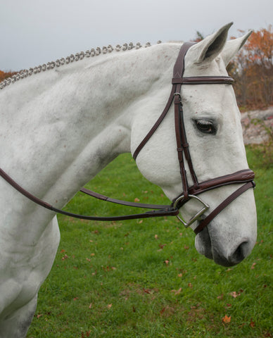 KL Italia Leather MILLBROOK Uni-Crown Padded Fancy Stitched Flash Cavesson Bridle with Rubber Reins