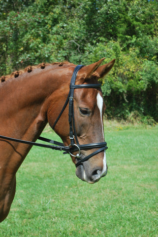 Red Barn Black Leather LEVADE Dressage Bridle with Reins