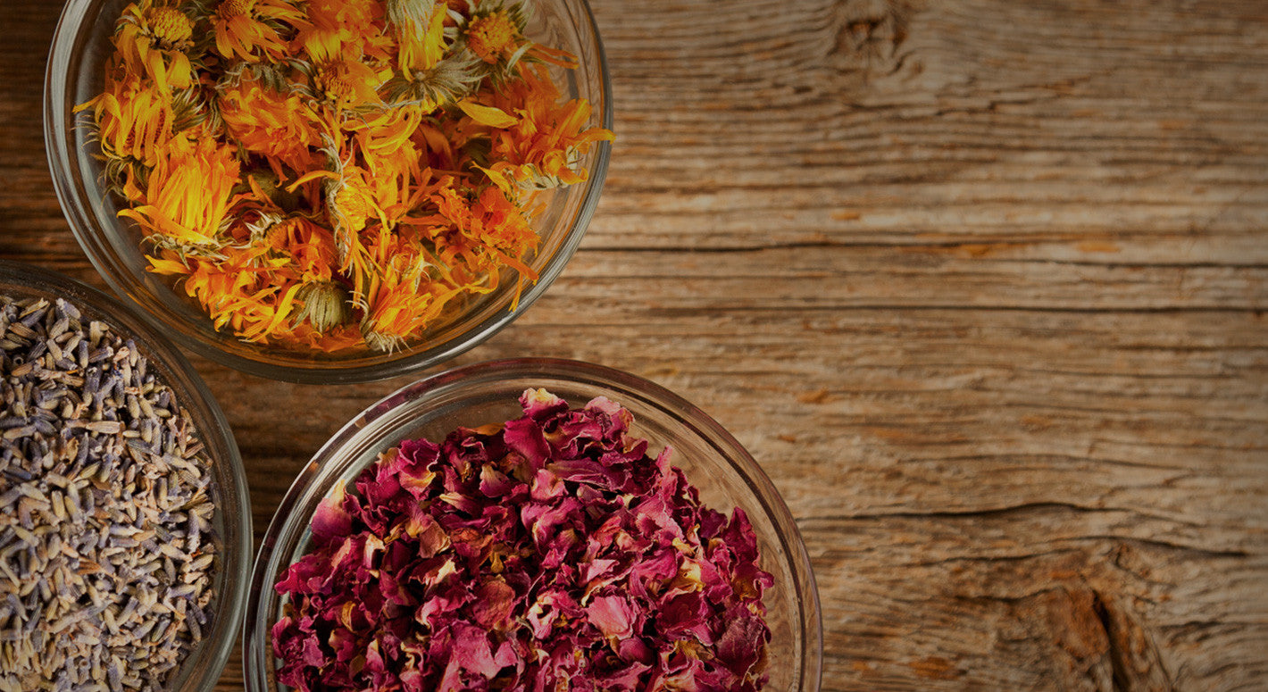 Herbal Remedies - Fresh from our Maine farm & gardens