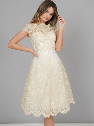 BRAND NEW CHI CHI LONDON IVORY & PALE GOLD LACE OVERLAY FIT & FLARE DRESS SIZE 6