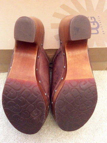 NEW IN BOX UGG LIGHT CHOCOLATE ABBIE CLOGS SIZE 3.5/36 - Whispers Dress Agency - Womens Mules & Flip Flops - 5