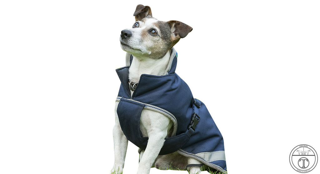BUCAS DOG JACKET- FREEDOM DOG COAT