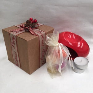 Burner and wax melts Christmas melts gift set.