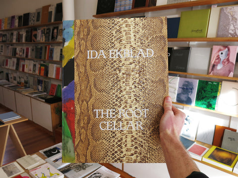 Ida Ekblad - The Cellar Door