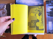 Load image into Gallery viewer, A Final Companion To Books From The Simpsons (Updated Version)