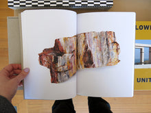 Load image into Gallery viewer, Bad Luck, Hot Rocks: Conscience Letters & Photographs from the Petrified Forest (Second Edition)