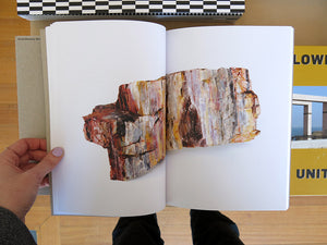 Bad Luck, Hot Rocks: Conscience Letters & Photographs from the Petrified Forest (Second Edition)