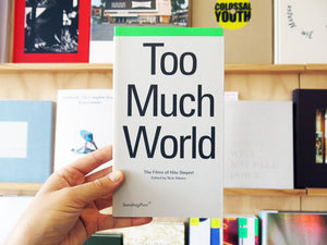 Hito Steyerl - Too Much World