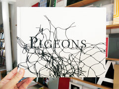 Stephen Gill - Pigeons