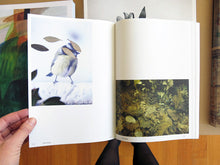 Load image into Gallery viewer, Anne Geene & Arjan De Nooy - Ornithology