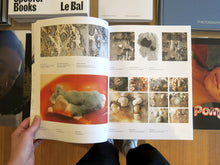 Load image into Gallery viewer, Lizan Freijsen – The Living Surface: An Alternative Biology Book on Stains