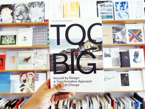 Too Big Rebuild By Design A Transformative Response To Climate Change