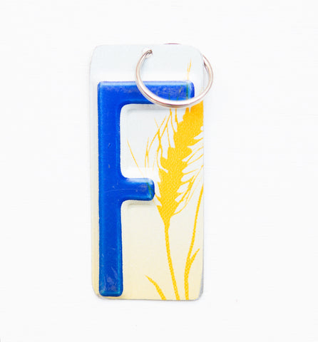 Letter F License Plate Key Chain, Initial Key Chain, Monogram accessory, Personalized key chain
