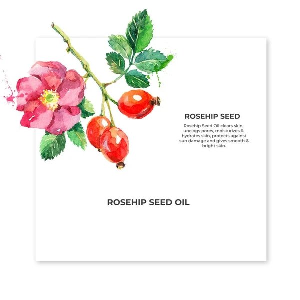 Organic Cold Pressed Rosehip Carrier Oil - Riviera Closet