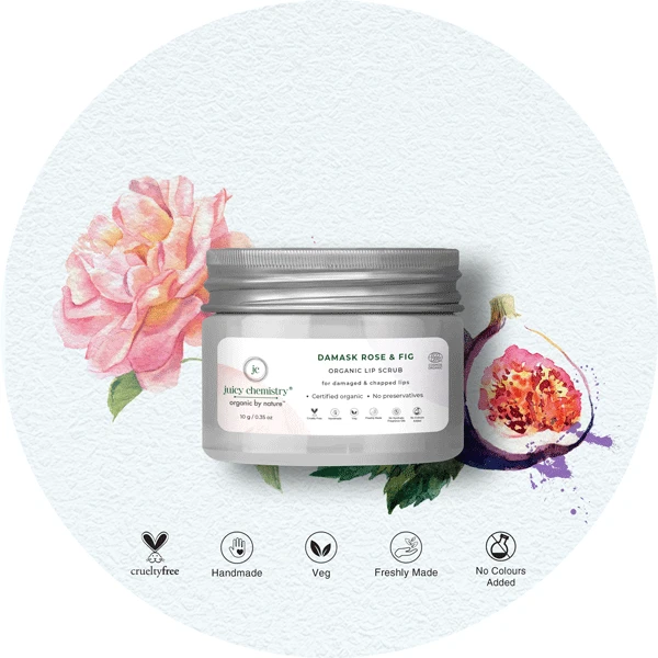 Damask Rose & Fig Organic Lip Scrub - Riviera Closet