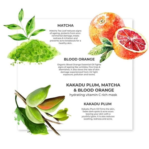 Kakadu Plum, Matcha & Blood Orange Organic Face Mask - Riviera Closet
