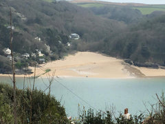 Picnic spot near Salcombe
