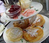 Tudor Rose Cream Tea Plymouth