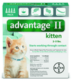Advantage II Kitten