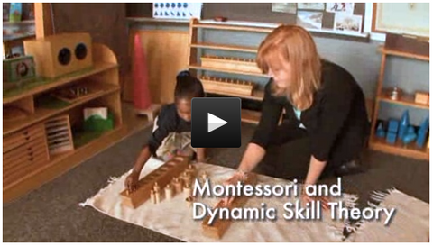 Montessori Dynamic Skill Theory