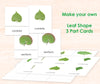Leaf Shapes PDF Download