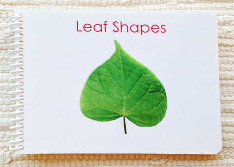 Imperfect Leaf Shapes (Botany Cabinet) Book - Maitri Learning