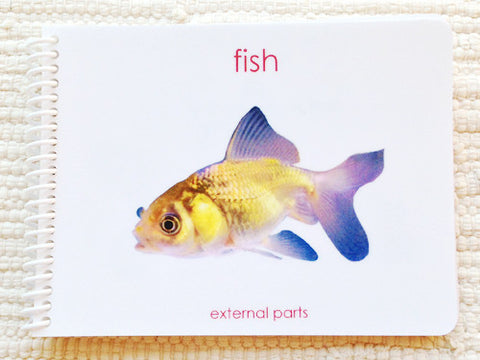 """Parts of"" the Fish Book: Older edition - Maitri Learning"