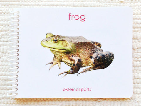 "Imperfect ""Parts of"" the Frog Book - Maitri Learning"