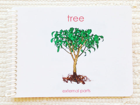 "Imperfect: ""Parts of"" the Tree Book - Maitri Learning"