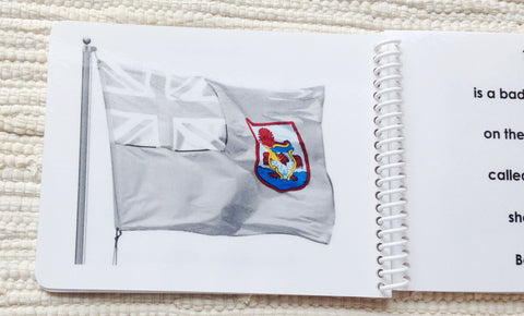 "Imperfect ""Parts of"" the Flag Book - Maitri Learning"