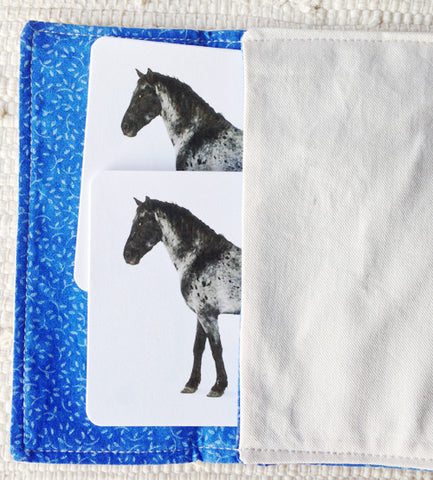 Horses (Coat Colors) Matching - Maitri Learning
