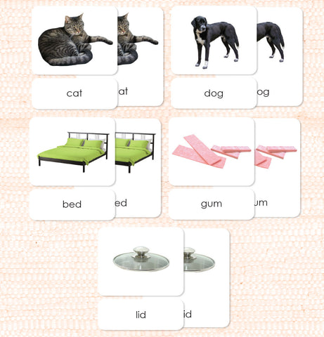 Phonetic Level 1 Set: Simplest Phonetic Words