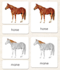 """Parts of"" the Horse <p>3-Part Reading - Maitri Learning"