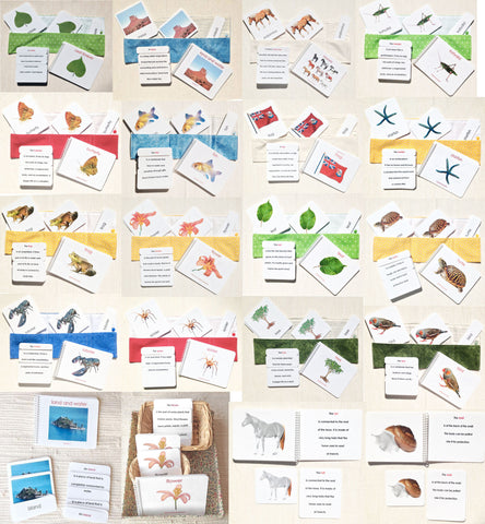 Complete Book & Card Set/21 - Maitri Learning  - 16