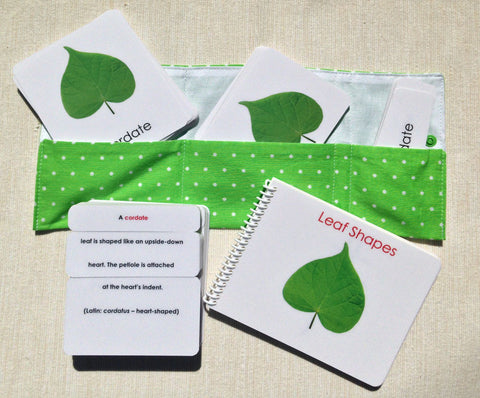 Leaf Shapes Book & Card Set - Maitri Learning