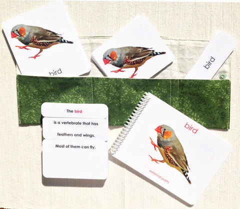 """Parts of"" the Bird Book & Card Set - Maitri Learning"