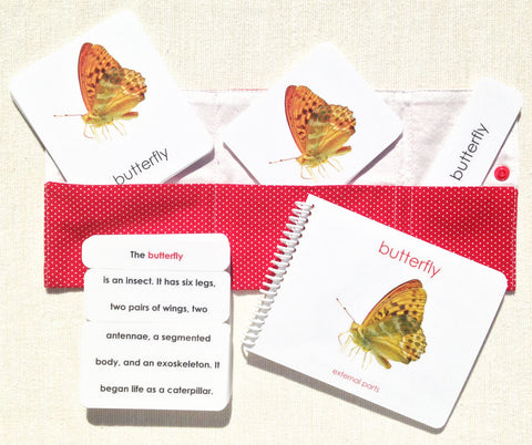 """Parts of"" the Butterfly Book & Card Set - Maitri Learning"