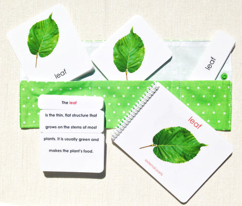 """Parts of"" the Leaf Book & Card Set - Maitri Learning"