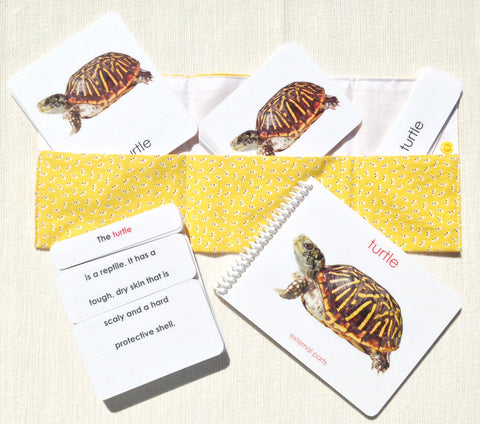 """Parts of"" the Turtle Book & Card Set - Maitri Learning"
