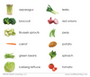Vegetables Toddler Cards - Maitri Learning