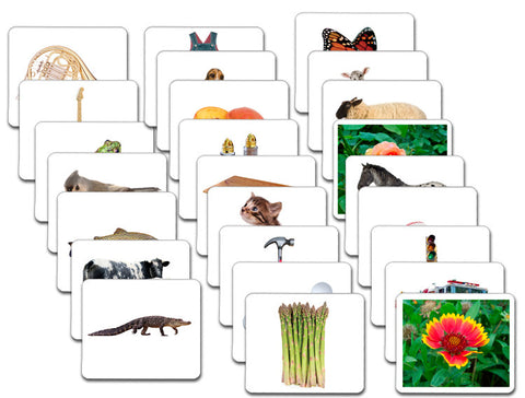 Vocabulary Card Set/25 - Maitri Learning