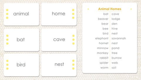 Animal Homes: Word Study - Maitri Learning