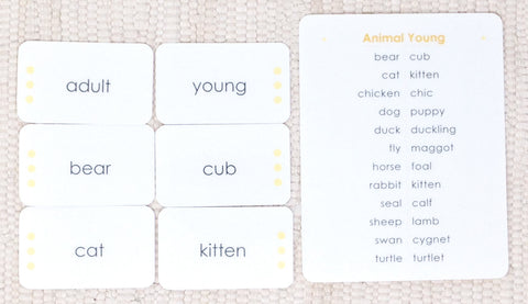 Imperfect Animals and their Young: Word Study - Maitri Learning